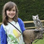 Meet the Owls at birdland