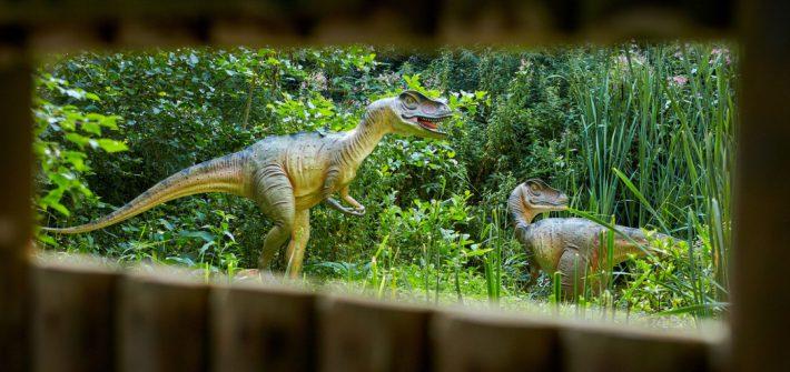 Journey to the Jurassic for October Half Term 1 710x335 - Myths & Legends at Birdland October Half Term