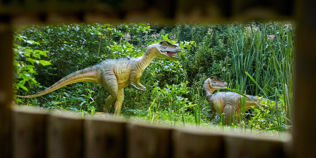 Journey to the Jurassic for October Half Term 1 - Myths & Legends at Birdland October Half Term