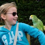 Summer Fun at Birdland