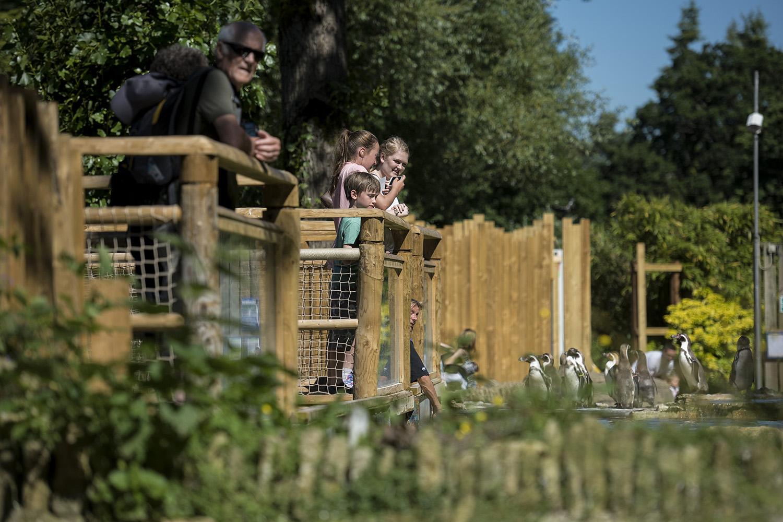Birdland Park & Gardensups welcome at Birdland Park and Gardens