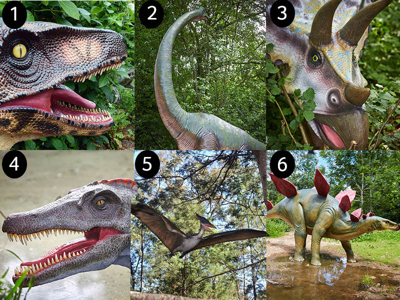 Guess the dinosaur - 'Roar'some Dinosaur Facts